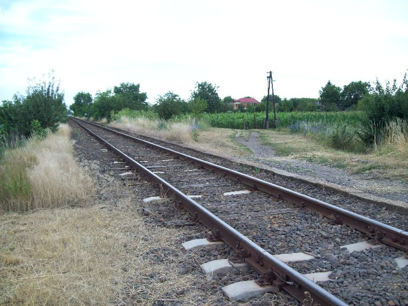 20140702 001 Tégláskert Sáránd felé.JPG