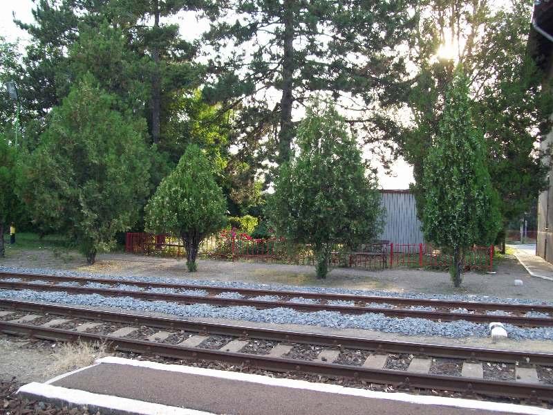 20140831 093 Sáránd állomás.JPG
