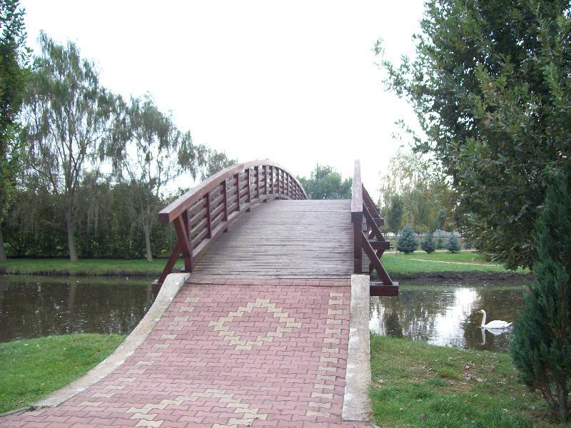 20141007 025 Nyírlugos pihenőpark.jpg