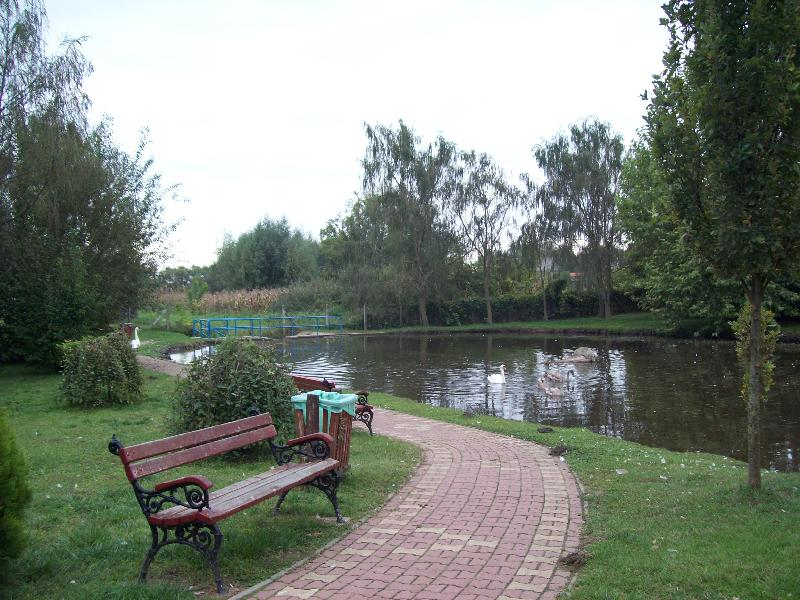 20141007 026 Nyírlugos pihenőpark.jpg
