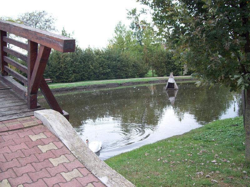 20141007 027 Nyírlugos pihenőpark.jpg