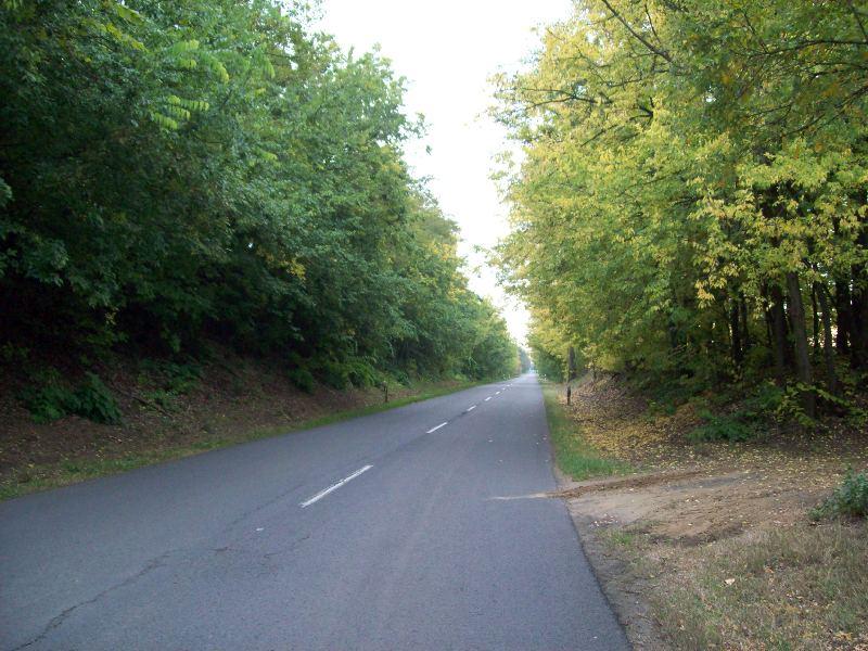 20141007 089 Hosszú egyenes út a megyehatár felé.jpg