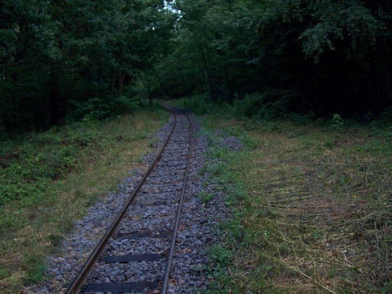 20120725 21 Kerékpárút és vasút kereszteződése 1.jpg