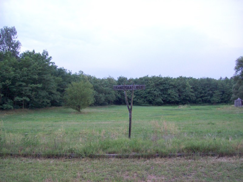 20120725 31 Fancsika rét 4.jpg