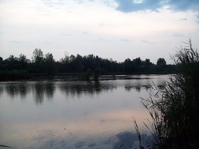 20120725 37 Fancsikai tó 1.jpg