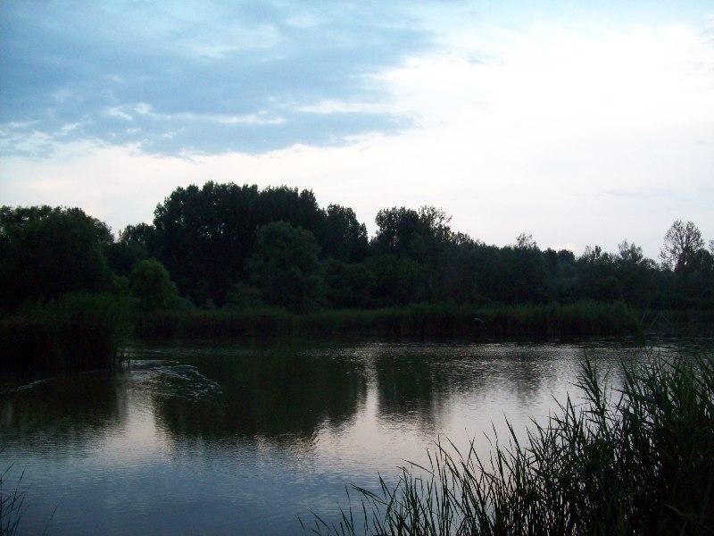 20120725 38 Fancsikai tó 2.jpg