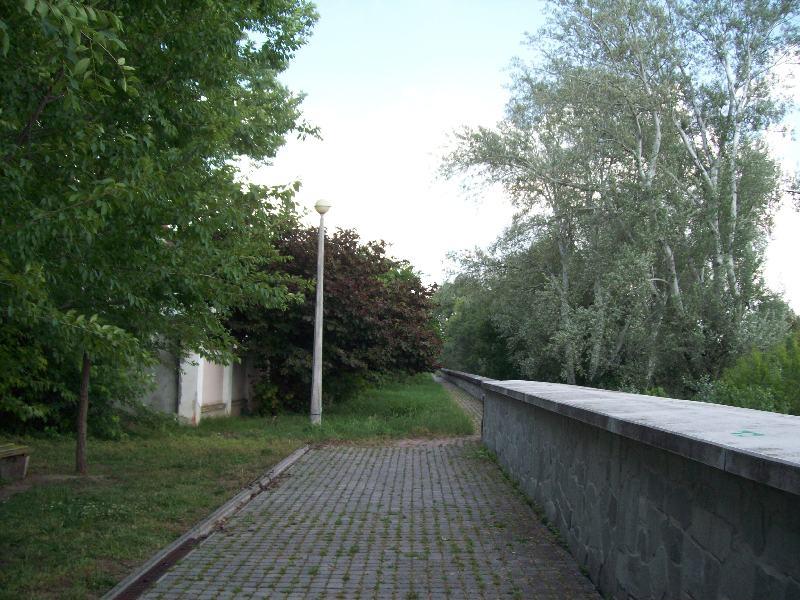 20140606 45 Tisza part.JPG