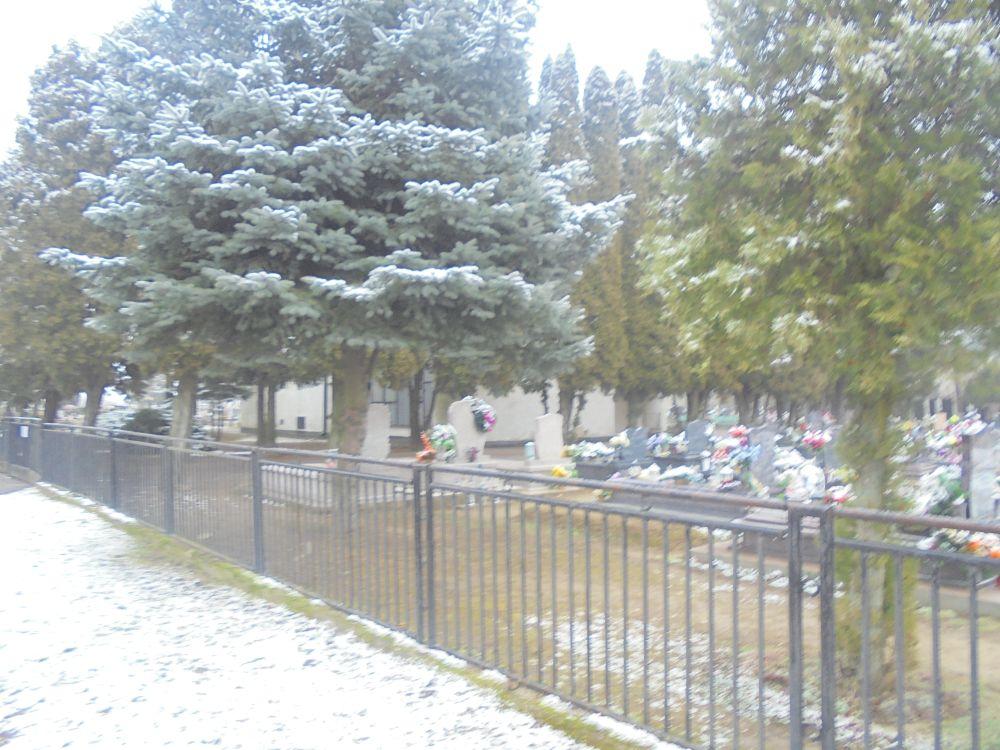 20180213_047_tiszacsernyo_temeto.JPG