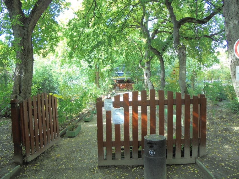 20161020_085_debrecen_nagy_katalin_emlekpark.JPG