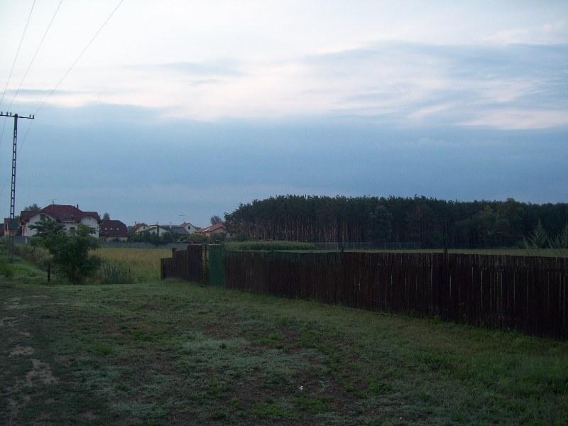 20120727 10.jpg