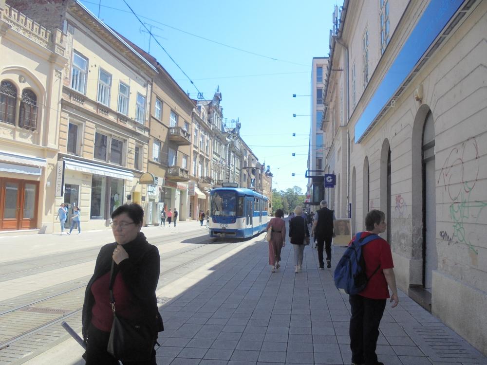 20190525_067_eszek_kapucinus_utca_tujaval.JPG