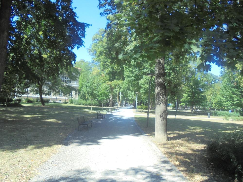 20180807_126_kassa_comenius_park.JPG