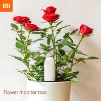 Xiaomi Mi Plant