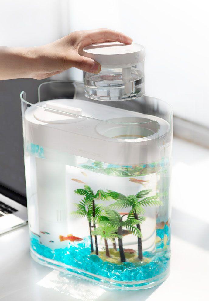 geometry_amphibious_ecological_fish_tank.jpg