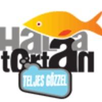 Évadnézettség: Hal a Tortán - Teljes Gőzzel