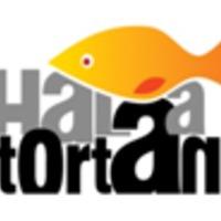 Évadnézettség: Hal A Tortán (2008-2010)