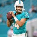 Ryan Fitzpatrick a Dolphins kezdőirányítója
