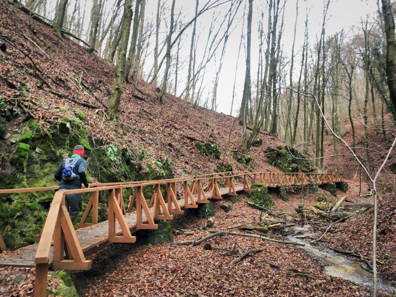 Életem első instant kihívása: Misina Trail a Mecsekben