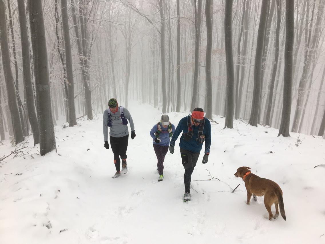 Az internet első cikke a téli futásról
