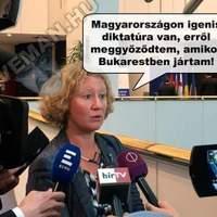 Politic Troll - Sargentini margójára
