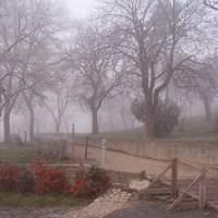 Téli Képek Magyarországról - Kedvcsináló a közelgő télhez 1. Tihany