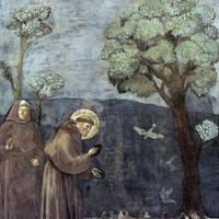 Giotto és a párhuzamos vonalak