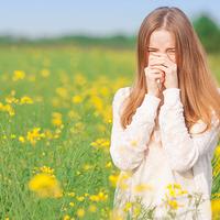 Lehet békében élni a pollenekkel?