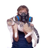 Miú, miújság a macskaallergiával?