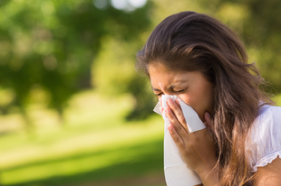 Allergia az évkörben: második negyedév