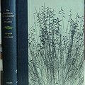 ~IBOOK~ The Natural Geography Of Plants. giorno yards budget audio Mujer search verbo