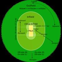Krikett