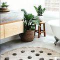 5 növény az trópusokról, amelyek jól fogják érezni magukat a fürdőszobádban is!