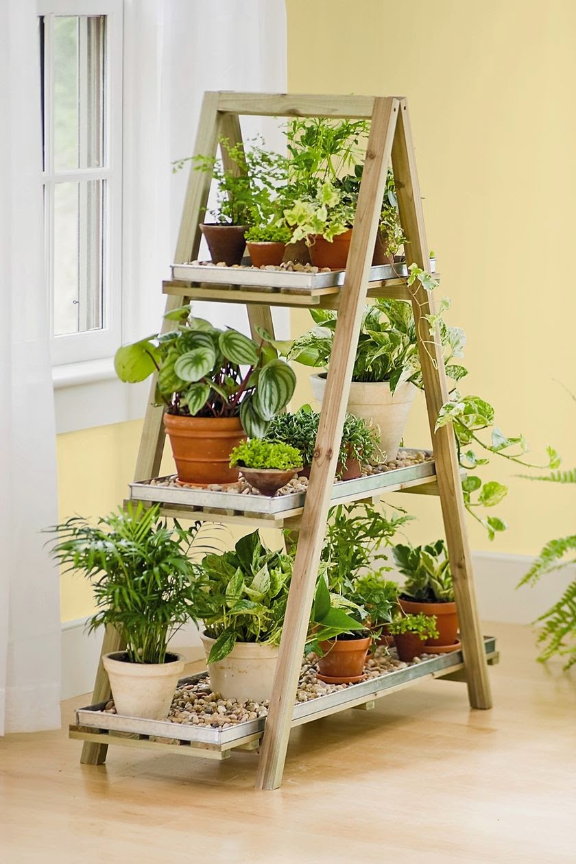 plant-stand-indoor-plant-display.jpg
