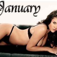 NST számadás - 2010, Január