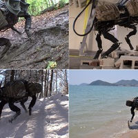 A legfejlettebb katonai robot: Big Dog