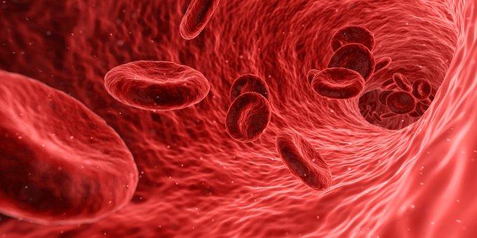 blood-1813410_340.jpg
