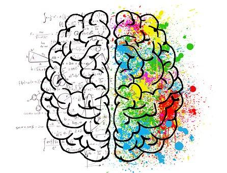 brain-2062057_340.jpg