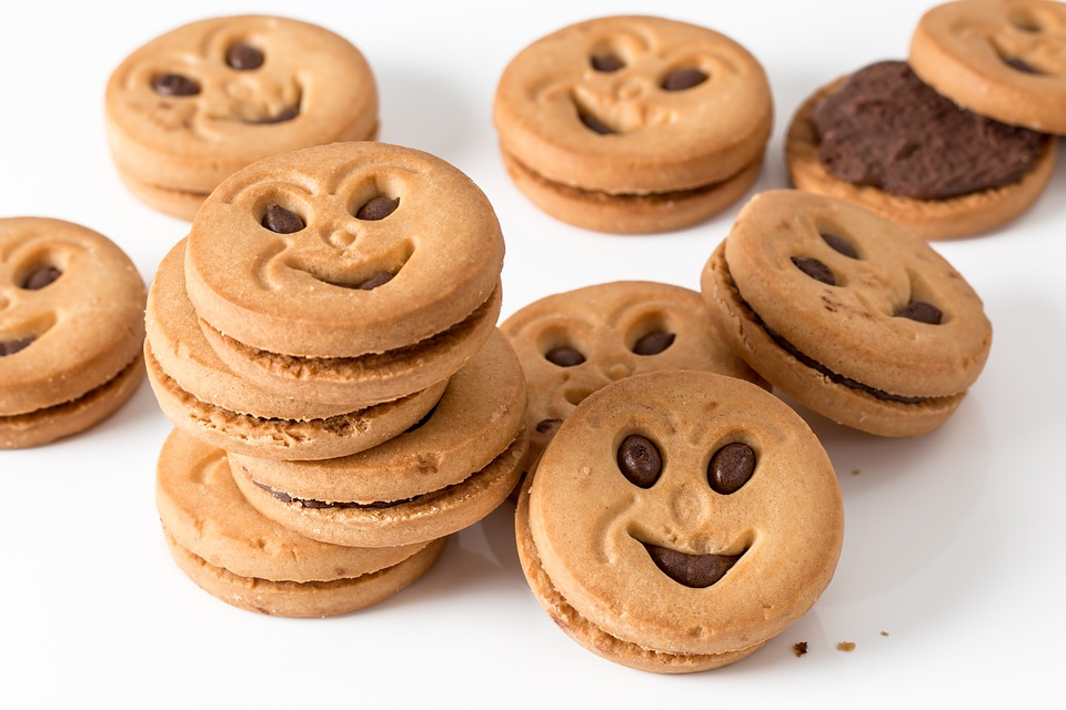 cookie-3216243_960_720.jpg