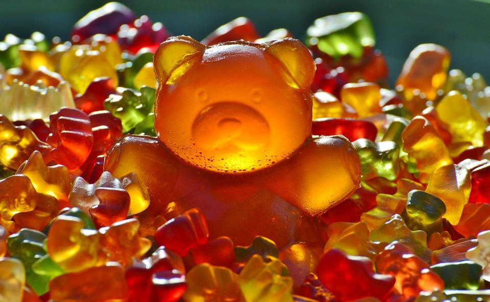 giant-rubber-bear-1089612_960_720.jpg