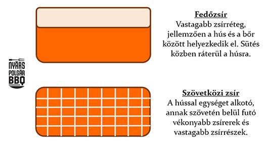 Zsírok_web_1.jpg