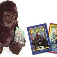 Koko beszél!