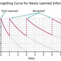 5 tipp nyelvtanuláshoz