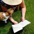 Miért jó újraolvasni valamit?