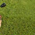 A saját figyelmedért is teszel annyit, mint a kutyádéért?