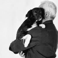 Mit ér a kutyád?