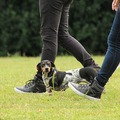 Hogy van időd kutyát sétáltatni?