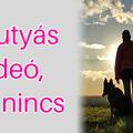 A kutyás videó, ami nincs – és ez benne a jó!