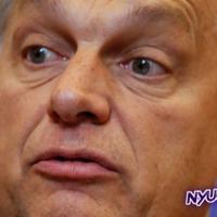 Ennek a mocskos népszavazásnak buknia kell, hogy Orbán negatív spirálba kerüljön