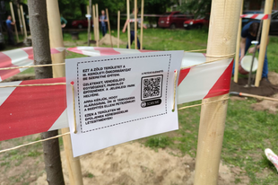 Római kapuja: faültetéssel a beépítés ellen - VIDEÓ