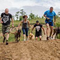 Kutyakemény napod lesz! - ezt ígéri neked a Hard Dog Race